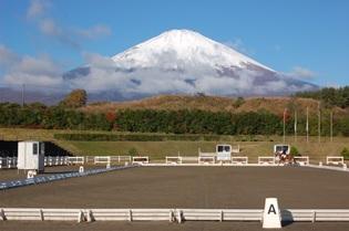 2016年、全日本競技の結果は?―全日本馬場馬術―