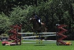 horseshow2-10.jpg