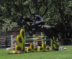 horseshow2-11.jpg