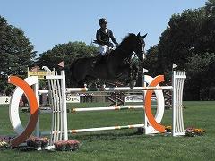 horseshow2-14.jpg