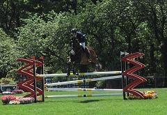 horseshow2-8.jpg
