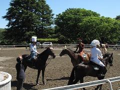horseshow3-13.jpg