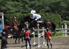 horseshow3-15.jpg