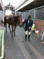 20121011 厩舎から競技場へ向かわれる岩坪教官