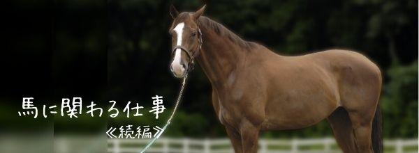 【馬に関わるお仕事 続編】