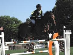 horseshow2-13.jpg