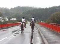 【乗馬界の長距離マラソン!エンデュランスの世界①】