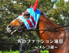 お洒落さんがいっぱい!? 馬のファッション通信 ~メンコ編~