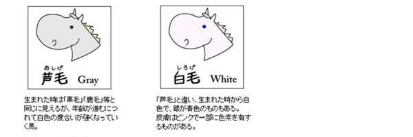 keiro3.jpg