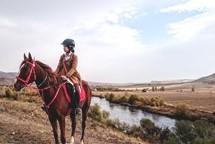 ~世界で乗馬を楽しむ~