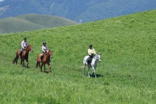 馬に乗って、草原や海岸沿いを走ってみよう!