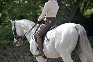 乗馬でダイエット!?乗馬の運動効果について