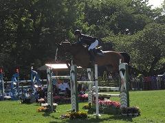 horseshow2-15.jpg