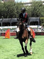 horseshow2-2.jpg