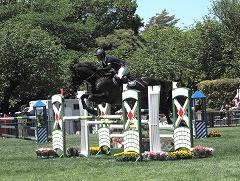 horseshow2-7.jpg