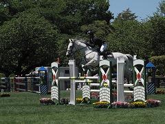 horseshow2-9.jpg
