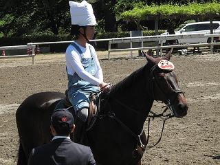 horseshow3-16.jpg