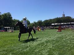 horseshow3-18.jpg