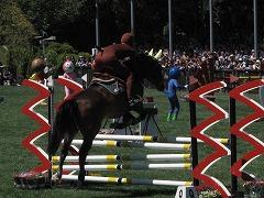 horseshow3-19.jpg