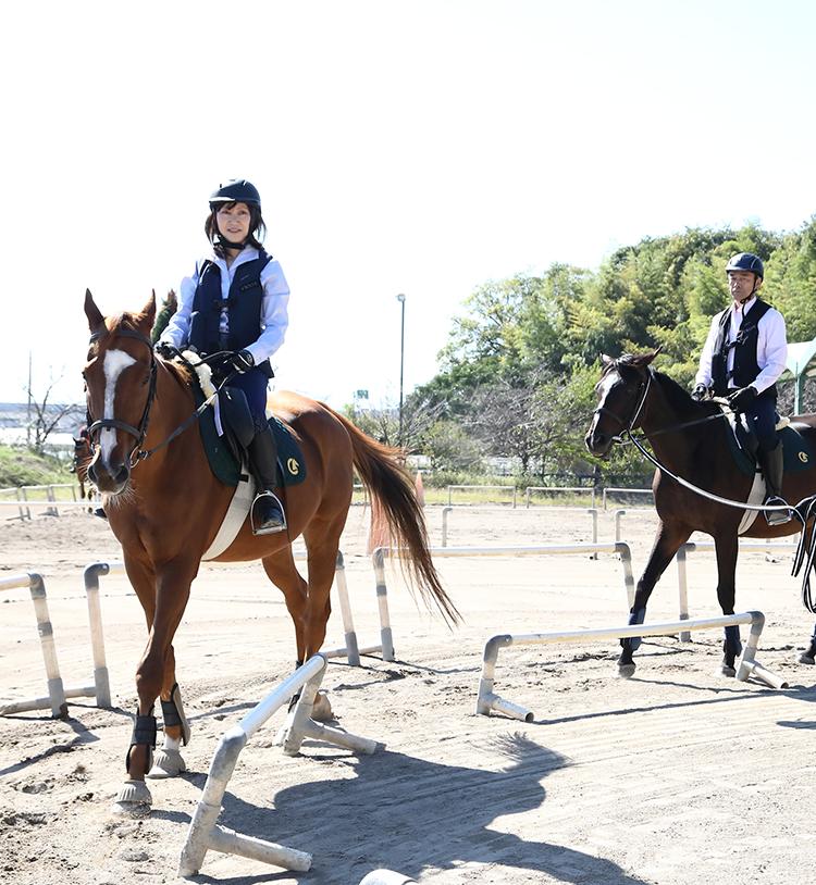 ペア家族限定乗馬体験