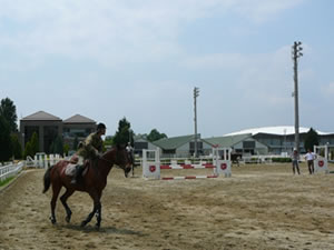 20120601_02 ORAグランドホースショー